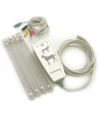 Электрокардиограф для ветеринарии ЭКГК-02